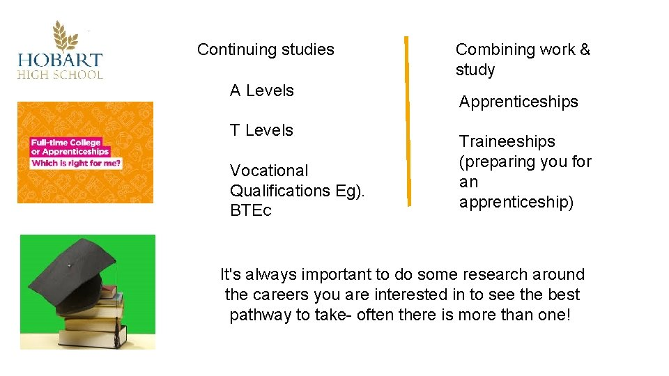 Continuing studies A Levels T Levels Vocational Qualifications Eg). BTEC Combining work & study