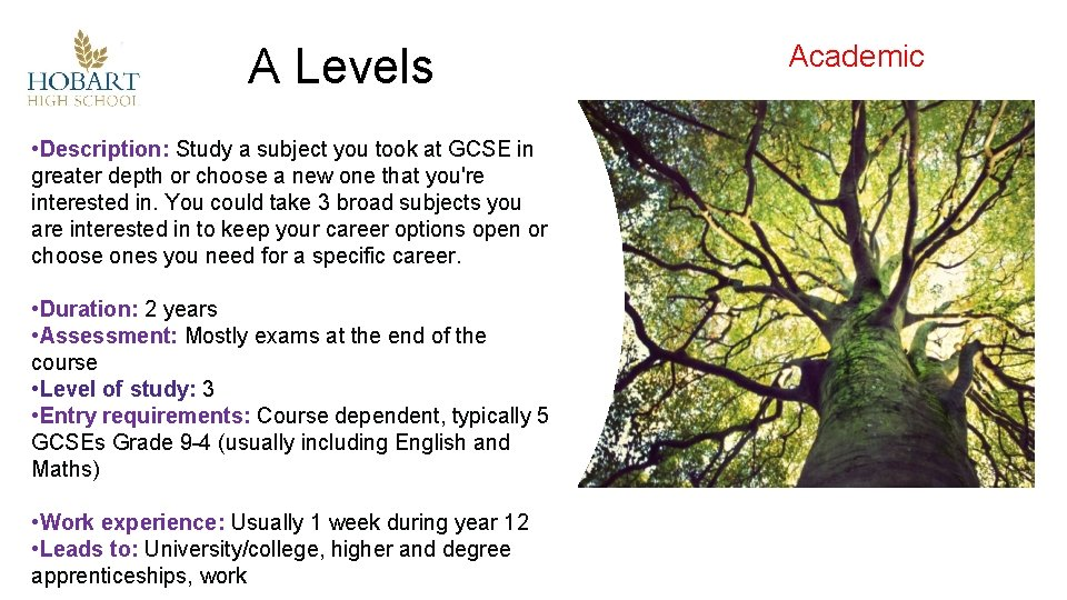 A Levels • Description: Study a subject you took at GCSE in greater depth
