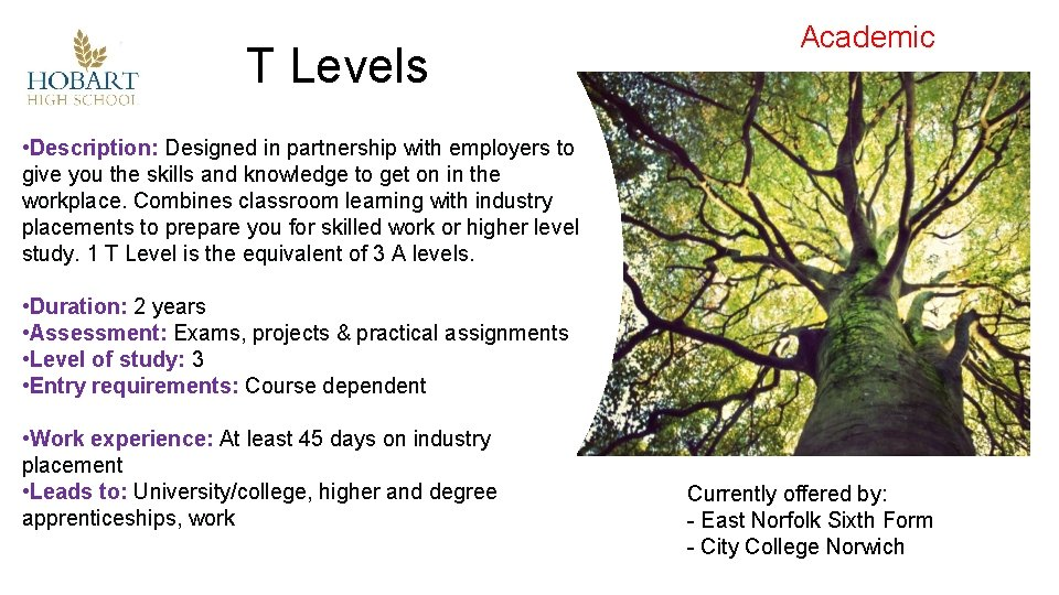 T Levels Academic • Description: Designed in partnership with employers to give you the