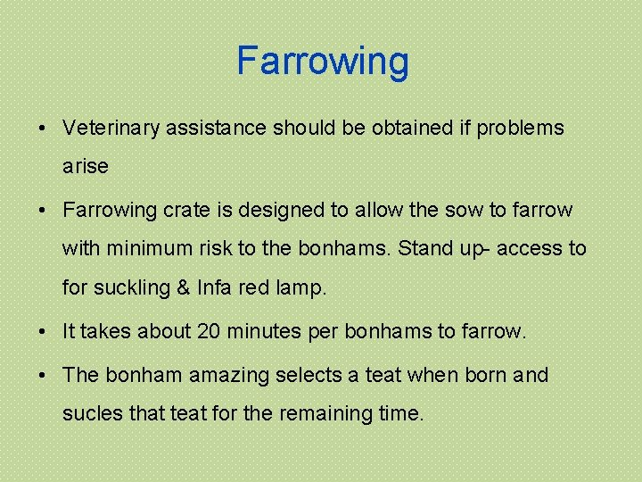 Farrowing • Veterinary assistance should be obtained if problems arise • Farrowing crate is