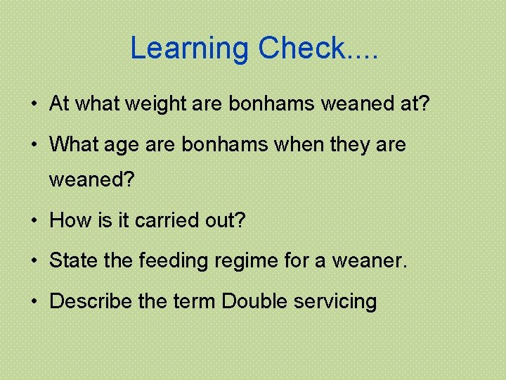 Learning Check. . • At what weight are bonhams weaned at? • What age