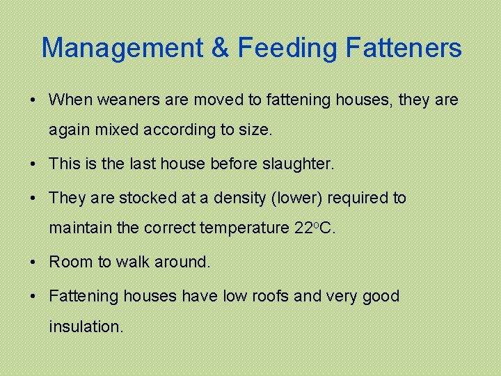 Management & Feeding Fatteners • When weaners are moved to fattening houses, they are