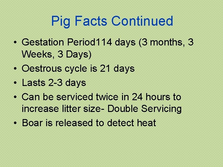 Pig Facts Continued • Gestation Period 114 days (3 months, 3 Weeks, 3 Days)