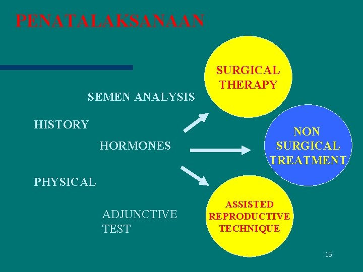 PENATALAKSANAAN SEMEN ANALYSIS HISTORY HORMONES SURGICAL THERAPY NON SURGICAL TREATMENT PHYSICAL ADJUNCTIVE TEST ASSISTED