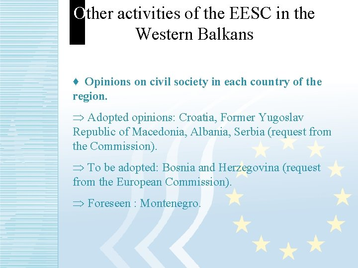 Other activities of the EESC in the Western Balkans ♦ Opinions on civil society