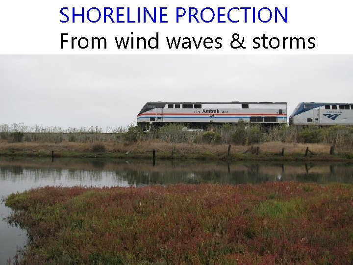SHORELINE PROECTION From wind waves & storms