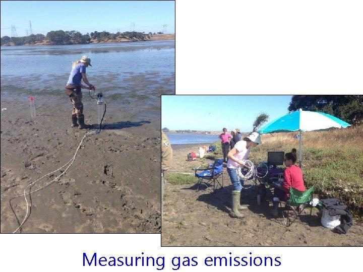 Measuring gas emissions