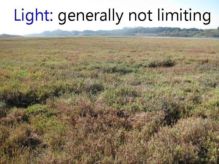Light: generally not limiting