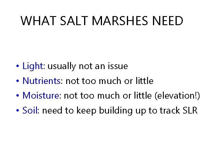 WHAT SALT MARSHES NEED • Light: usually not an issue • Nutrients: not too