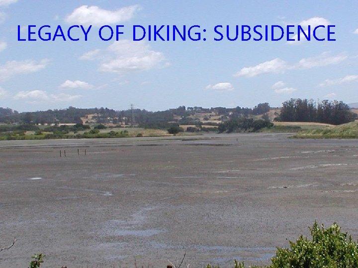 LEGACY OF DIKING: SUBSIDENCE