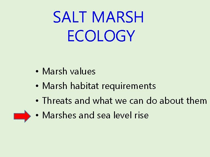 SALT MARSH ECOLOGY • Marsh values • Marsh habitat requirements • Threats and what