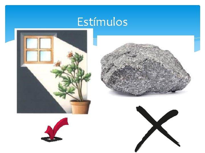 Estímulos