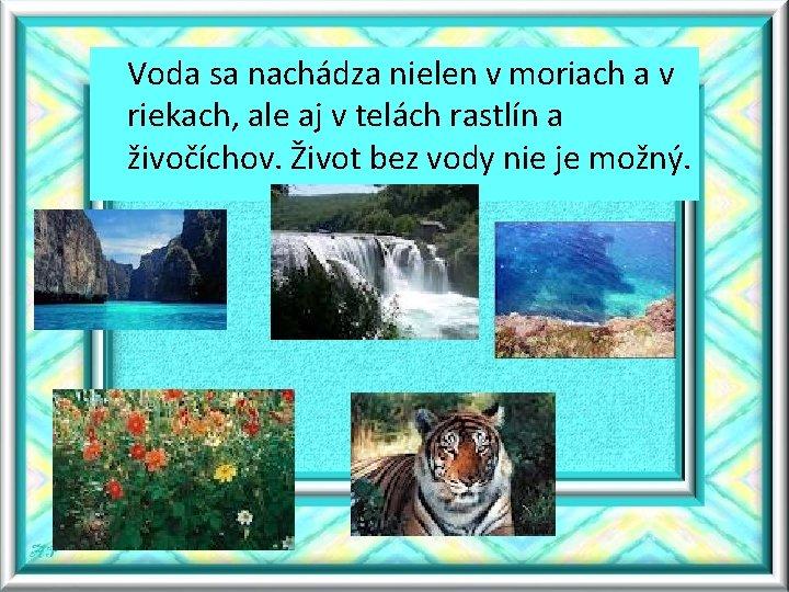 Voda sa nachádza nielen v moriach a v riekach, ale aj v telách rastlín