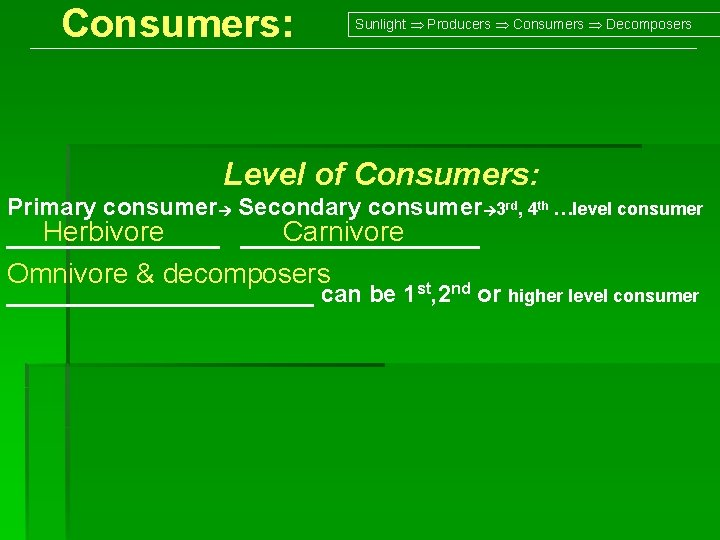 Consumers: Sunlight Producers Consumers Decomposers Level of Consumers: Primary consumer Secondary consumer 3 rd,