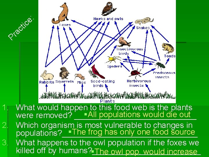 : e ic t ac Pr 1. What would happen to this food web