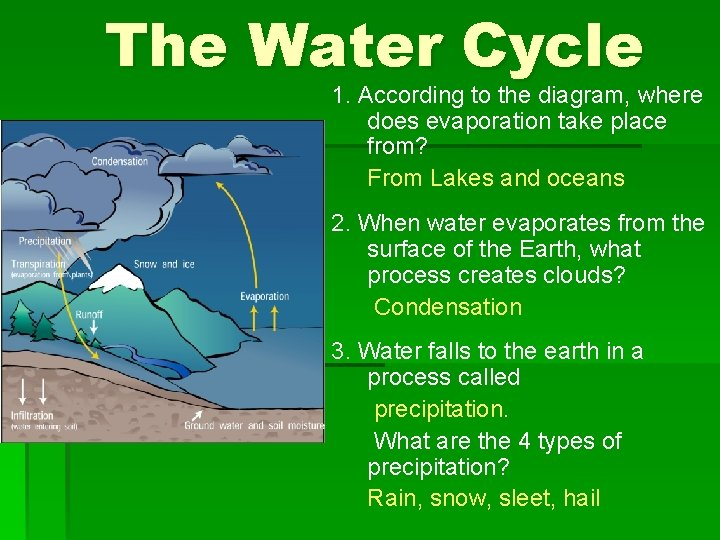 The Water Cycle 1. According to the diagram, where does evaporation take place from?