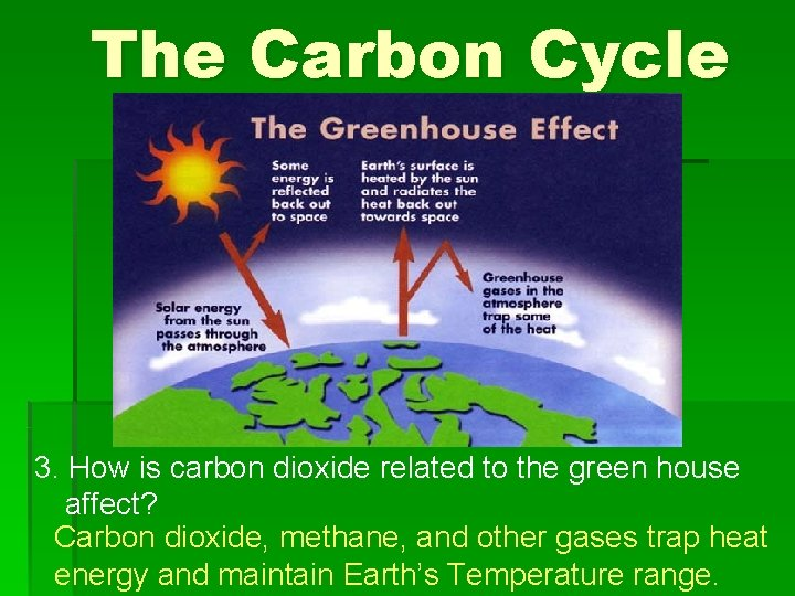 The Carbon Cycle 3. How is carbon dioxide related to the green house affect?