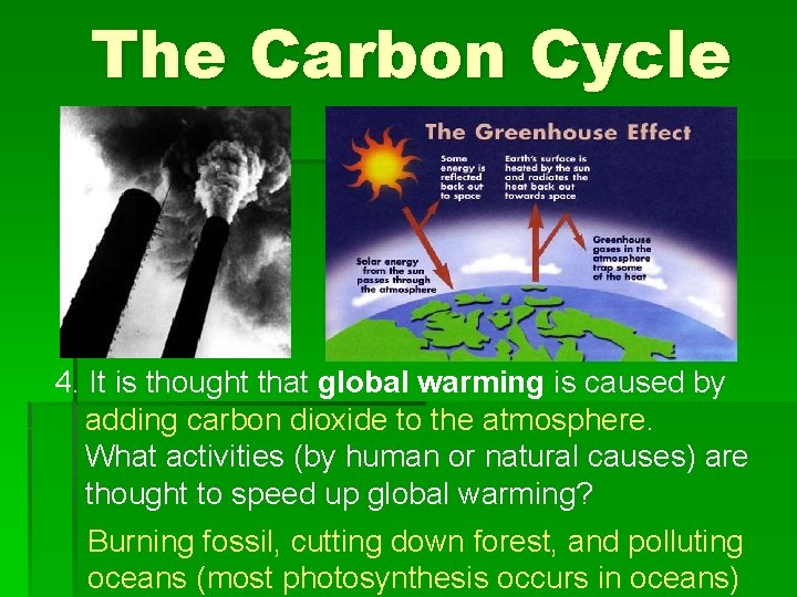 The Carbon Cycle 4. It is thought that global warming is caused by adding