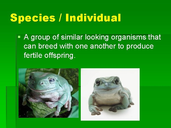 Species / Individual § A group of similar looking organisms that can breed with