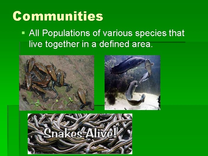 Communities § All Populations of various species that live together in a defined area.