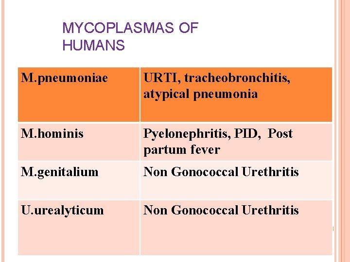 MYCOPLASMAS OF HUMANS M. pneumoniae URTI, tracheobronchitis, atypical pneumonia M. hominis Pyelonephritis, PID, Post