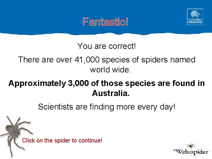 Fantastic! You are correct! There are over 41, 000 species of spiders named world