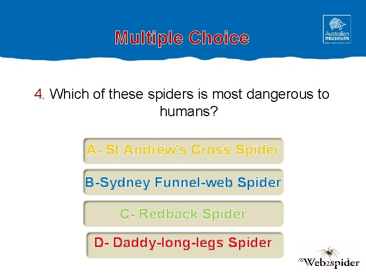 Multiple Choice 4. Which of these spiders is most dangerous to humans? A- St