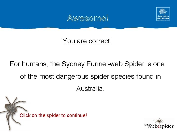 Awesome! You are correct! For humans, the Sydney Funnel-web Spider is one of the
