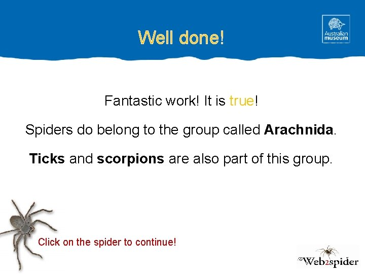 Well done! Fantastic work! It is true! Spiders do belong to the group called