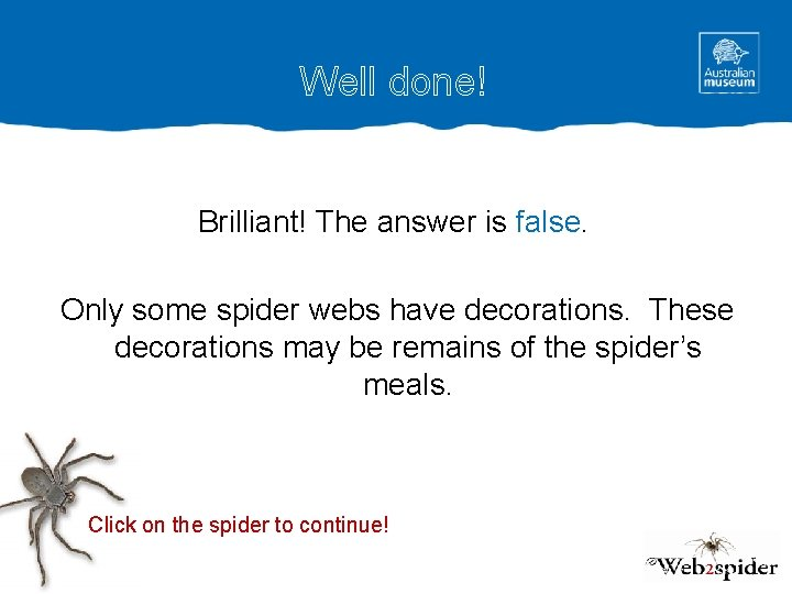 Well done! Brilliant! The answer is false. Only some spider webs have decorations. These