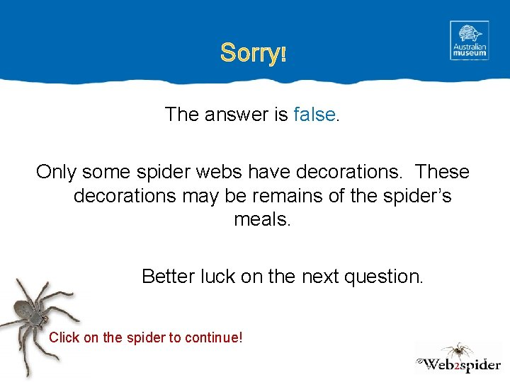Sorry! The answer is false. Only some spider webs have decorations. These decorations may