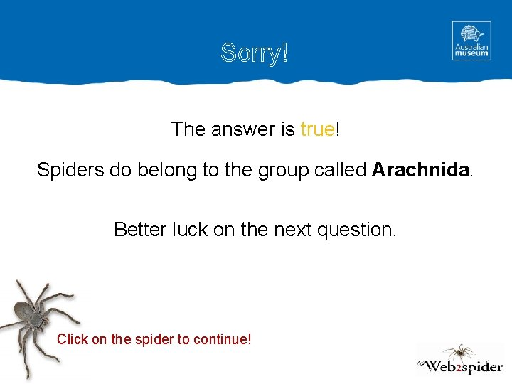 Sorry! The answer is true! Spiders do belong to the group called Arachnida. Better