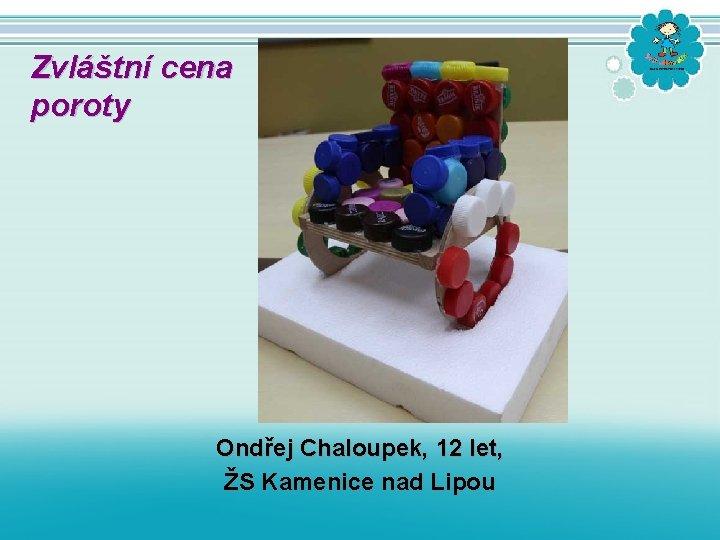 Zvláštní cena poroty Ondřej Chaloupek, 12 let, ŽS Kamenice nad Lipou