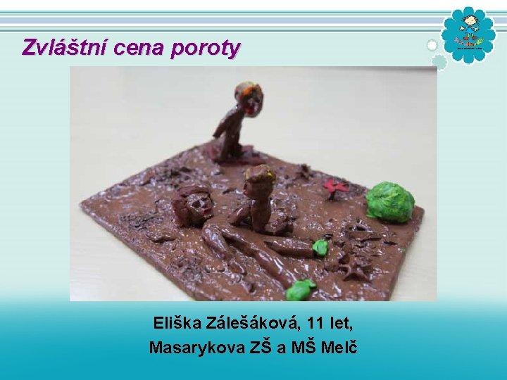 Zvláštní cena poroty Eliška Zálešáková, 11 let, Masarykova ZŠ a MŠ Melč