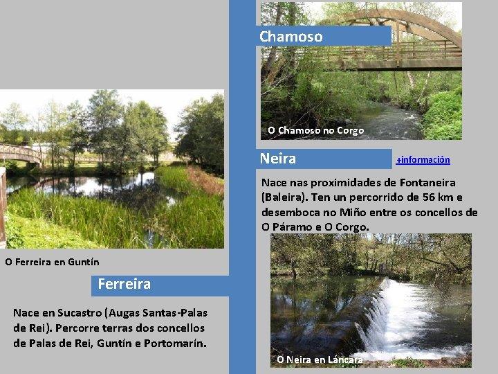 Chamoso O Chamoso no Corgo Neira +información Nace nas proximidades de Fontaneira (Baleira). Ten