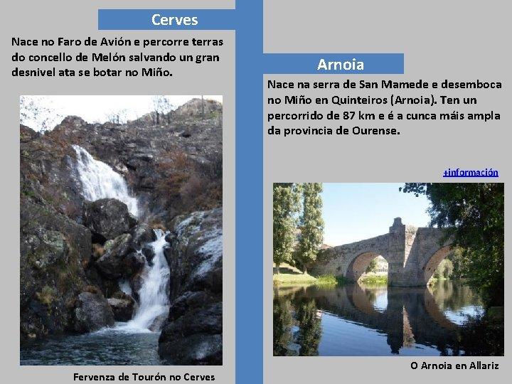 Cerves Nace no Faro de Avión e percorre terras do concello de Melón salvando