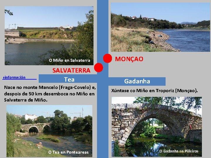 O Miño en Salvaterra +información SALVATERRA Tea Nace no monte Mancelo (Fraga-Covelo) e, despois