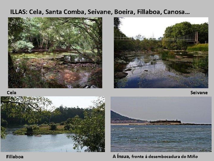 ILLAS: Cela, Santa Comba, Seivane, Boeira, Fillaboa, Canosa… Cela Fillaboa Seivane A Ínsua, fronte