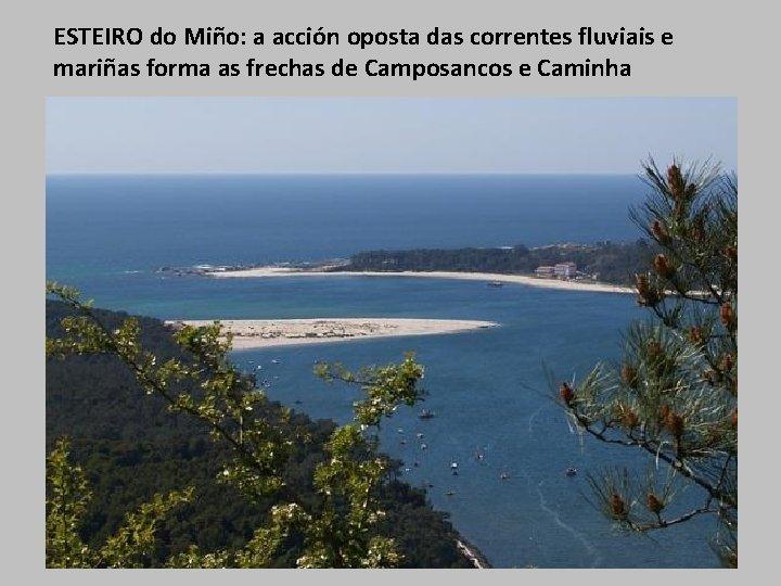 ESTEIRO do Miño: a acción oposta das correntes fluviais e mariñas forma as frechas