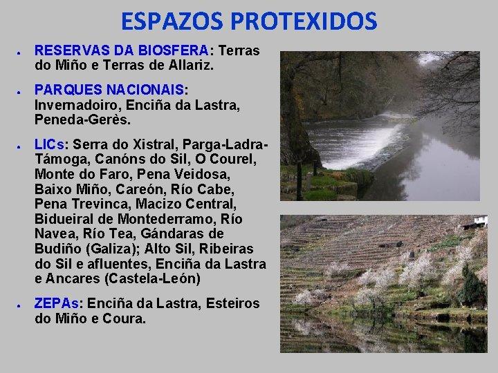 ESPAZOS PROTEXIDOS ● ● RESERVAS DA BIOSFERA: Terras do Miño e Terras de Allariz.
