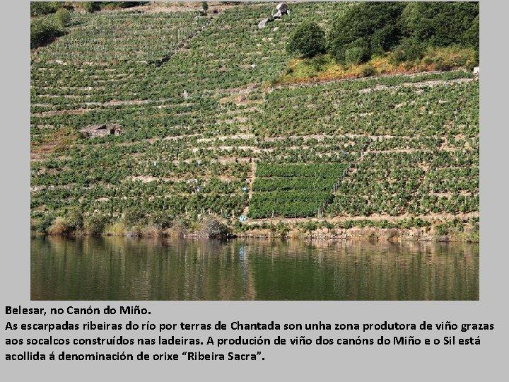 Belesar, no Canón do Miño. As escarpadas ribeiras do río por terras de Chantada