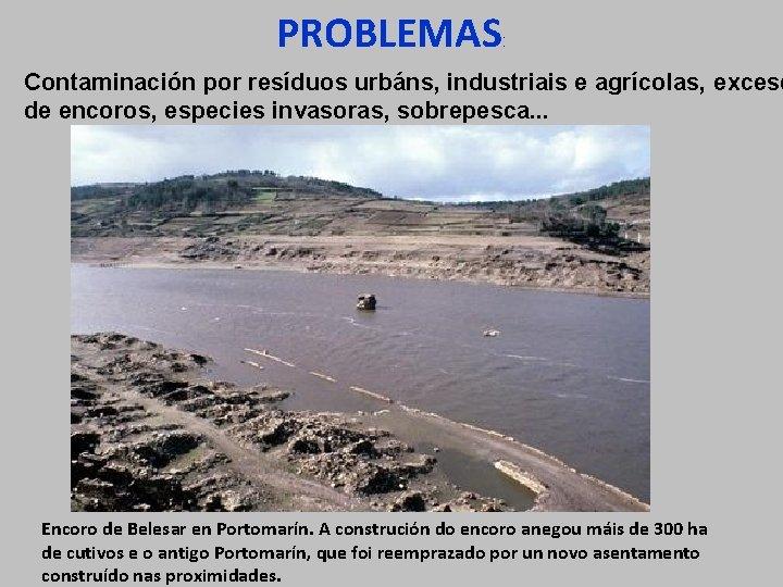 PROBLEMAS : Contaminación por resíduos urbáns, industriais e agrícolas, exceso de encoros, especies invasoras,