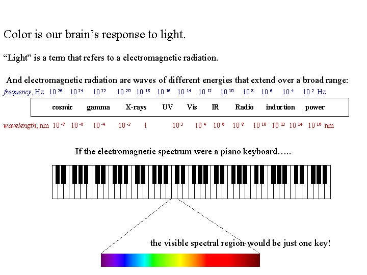 """Color is our brain's response to light. """"Light"""" is a term that refers to"""