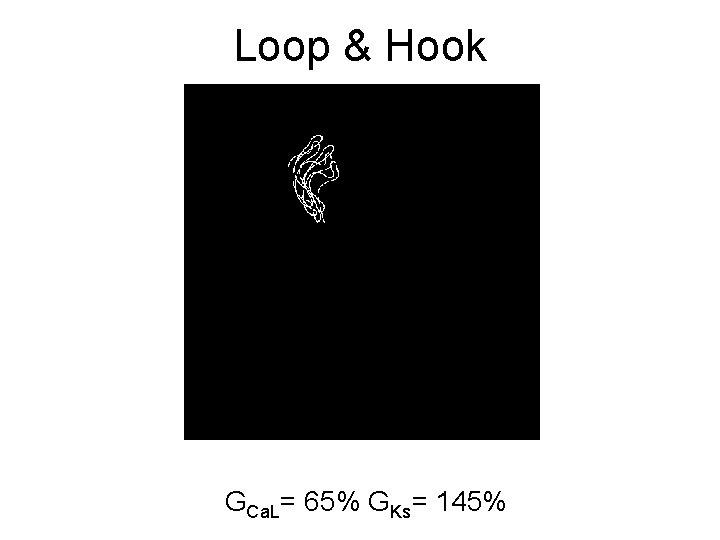 Loop & Hook GCa. L= 65% GKs= 145%