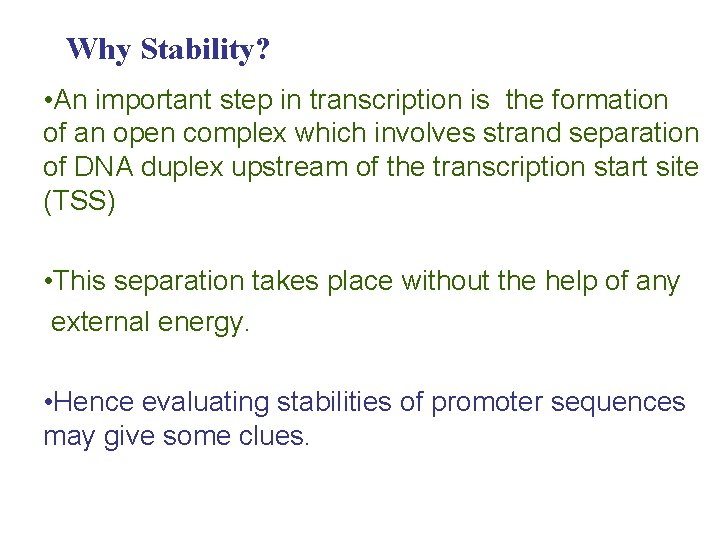 Why Stability? • An important step in transcription is the formation of an open