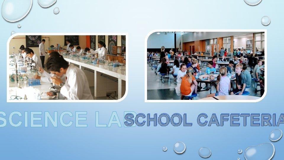 SCHOOL CAFETERIA SCIENCE LAB