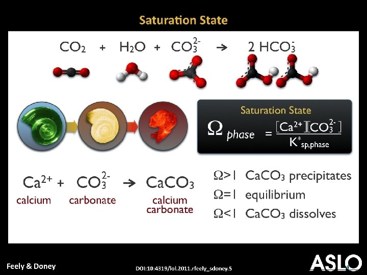 How do we examine the carbonate system? Geochemical/biochemical -Temperature, salinity Biological Calcification -Dissolved oxygen