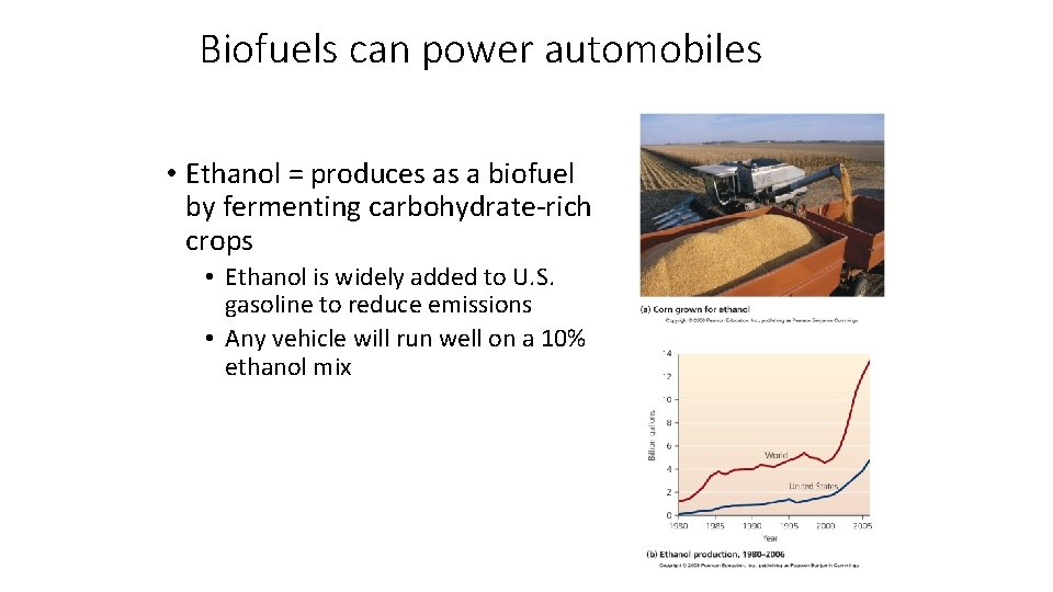 Biofuels can power automobiles • Ethanol = produces as a biofuel by fermenting carbohydrate-rich