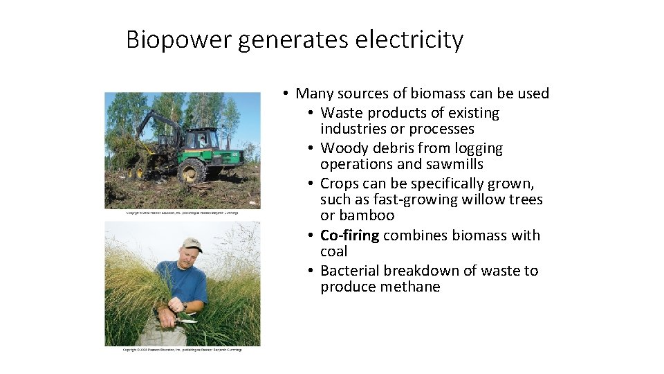 Biopower generates electricity • Many sources of biomass can be used • Waste products