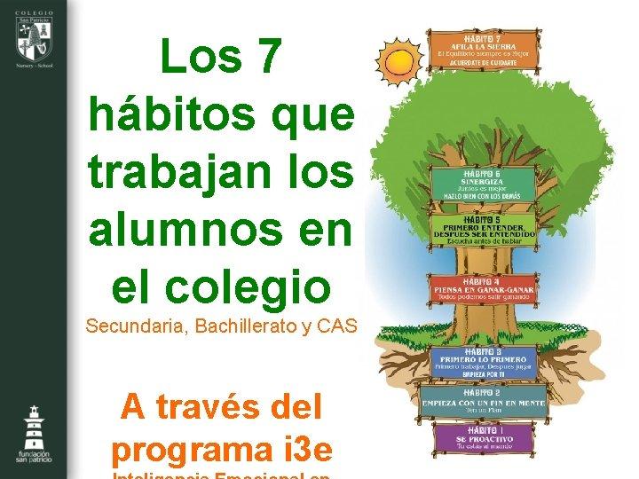 Los 7 hábitos que trabajan los alumnos en el colegio Secundaria, Bachillerato y CAS